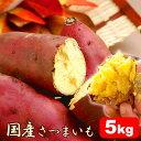 送料無料 紅あずまのサツマイモ 5kg さつまいもダイエットやお料理・スイーツお菓子作りに 国産ベニアズマのさつま芋 薩摩芋 生芋 送料込み AA