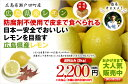 広島県瀬戸田産レモン 防腐剤不使用 良品2kg(約16玉〜20玉)【送料無料】