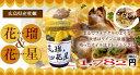 広島 牡蠣加工品 オイル&オイスター 牡蠣のオイル漬け