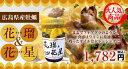 広島 牡蠣加工品 花瑠&花星(オイル&オイスター) 牡蠣のオイル漬け