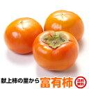 柿 茨城県 かき フルーツ 富有柿 L1...