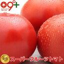 フルーツトマト トマト「スーパーフルーツトマト大箱(18〜35玉 約2.8kg)×2 糖度9度以上」とまと 高糖度 送料無料 茨城県 ランキング1位..