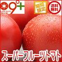 フルーツトマト トマト「スーパーフルーツトマト大箱(18〜28玉 約2.8kg)×2 糖度9度以