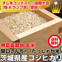 米 玄米 29年米「関口さんちのたっしゃか米 玄米5kg」無農薬栽培米 コシヒカリ 送料無料 こしひかり お歳暮 年賀 お中元 ギフト
