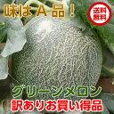訳あり メロン 送料無料「グリーンメロンB品2〜3玉3.5kg以上」味はA品と同じ お買い得 茨城県