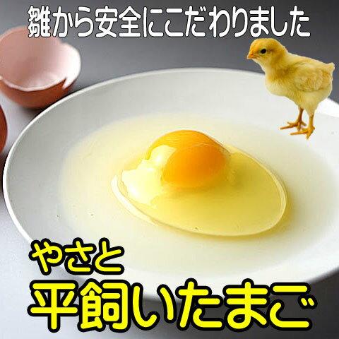 卵 タマゴ 「やさと平飼い卵M180個」 送料無料 安全安心 こだわり新鮮卵 産み立て産地直送 たまご 玉子 平飼い卵 茨城 ギフト お取り寄せ