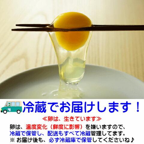 卵 タマゴ 「やさと平飼い卵M50個」 送料無...の紹介画像3