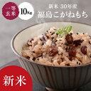 米 もち米 10Kg 送料無料 【福島県産 こがねもち 10Kg】お米 玄米 白米 新米 もち モ