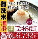 米 20Kg 送料無料 無洗米【福島の農家蔵出し米 20Kg】