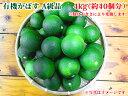 大分県産 無農薬・無添加 有機かぼす4kg 【かぼす】 かぼす青果
