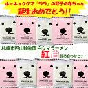 札幌円山動物園 白クマラーメン紅白セット 塩×5食 醤油×5食入【北海...
