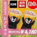 【新米】平成28年産米 熊本県城北産ヒノヒカリ 精白米10kg(5kg×2袋) 【送料無料】