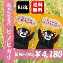 【平成28年産米】 熊本県城北産ヒノヒカリ 精白米10kg(5kg×2袋) 【送料無料】