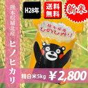 【新米】平成28年産米 熊本県城北産ヒノヒカリ 精白米5kg 【送料無料】【おいしいお米】【九州産 米】【九州熊本県から直送】