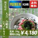 【無農薬】平成28年産米 熊本県人吉産 合鴨米(ヒノヒカリ) 玄米5kg 【送料無料】【おいしいお米