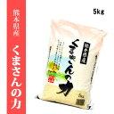 平成30年産米 熊本県産くまさんの力 精白米5kg 【送料無料】【おいしいお米】【九州産 米】【九州熊本県から直送】