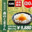 【新米】平成28年産米 熊本県産森のくまさん 玄米30kg(10kg×3袋) 【送料無料】【おいしいお米】【九州産 米】【九州熊本県から直送】