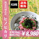 【平成28年産米】 熊本県城北産ヒノヒカリ 玄米30kg(10kg×3袋) 【送料無料】【九州産 米】