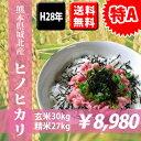 【送料無料】【特A】 H28年熊本県城北産ヒノヒカリ 玄米30kg(10kg×3袋)【九州産 米】