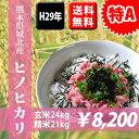 【特A】選べる精米 6種類★玄米食専用玄米/精白米/分づき対...