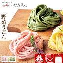野菜うどんセットE A063 |和食 饂飩 麺 グルメ 詰め合