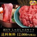 ☆総内容量1.1kg☆4、5人前近江牛 しゃぶしゃぶセット【...