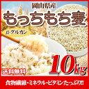 29年産 岡山県産大麦100%もっちもち麦10kg【5kg×2袋】【新麦入荷】【β-グルカン/水溶性