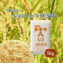 米 お米 5kg ひのひかり胚芽米 30年岡山県産 送料無料