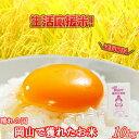 晴れの国岡山で穫れたお米 10kg (1...