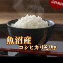 米 お米 25kg 魚沼産 コシヒカリ 令和元年産 (5kg×5袋) 送料無料