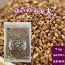 新麦 国産 もち麦 ダイシモチ 950g チャック付 令和元...