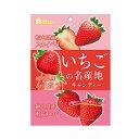 ショッピングお菓子 ライオン菓子 いちごの名産地キャンディー 72g 6コ入り 2019/11/11発売(4903939012815)