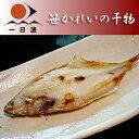笹かれいの干物 1尾(140-150g)【RCP】【岡富商店】【kf】