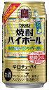 宝酒造 焼酎ハイボール 強烈塩レモンサイダー チューハイ 350ml×24本