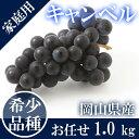 【29年新米】清流米(あきたこまち)5kg