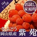 \ 送料無料 / お試し簡易包装 岡山県産 紫苑 1kg(1...