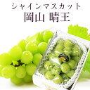 岡山県産 シャインマスカット 晴王 青秀品 1房600g 贈答用 葡萄 ブドウ