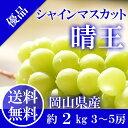 岡山県産 シャインマスカット 晴王 優品3〜5房2kg 家庭...
