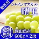 岡山県産 シャインマスカット 晴王 赤秀品 2房600g×2...