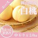 【予約7月上旬から発送】岡山 白桃 家庭用 5〜9玉入り 約...