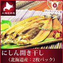 New_sakana_nishin