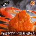 送料無料 ギフト『超特大本ずわい蟹:ボイル姿1.3-1.5k...