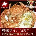毛ガニ 毛蟹 毛がに『特選北海道産ボイル毛ガニ』(特大600-750g/サイズ選択可能)蟹 カニ かに ケガニ けがにのし ギフト 贈答用