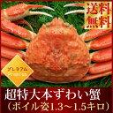 ズワイ 送料無料『超特大本ずわい蟹:ボイル姿1.3-1.5k...