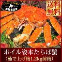 送料無料 タラバガニ 北海道産 身入り最特選 ボイル姿『特大...