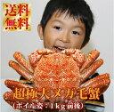 【送料無料】『超特大浜茹で毛ガニ(北海道産:極大1kg前後)』北海道でも見かけることのないメガ毛ガニ参上!もちろん数量限定での取り扱いです。
