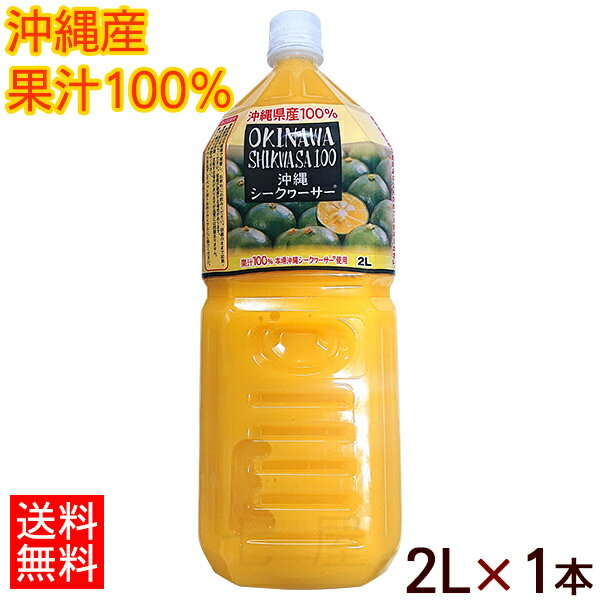 【送料無料】オキハム沖縄シークワーサー100 2...の商品画像