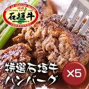 【送料無料】石垣牛ハンバーグ8個 ギフトセット 5箱セット|石垣牛|冷凍|牛肉|ハンバーグ[食べ物>お肉>ハンバーグ]【point10】