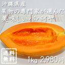 パパイヤは南国沖縄の代表的なフルーツで、ジューシーな甘みと、とろけるような果肉が特徴です。沖縄土産や贈り物にも人気です!|パパイヤ|送料無料【送料無料】沖縄県産・果物の専門家が選んだ美味しいパパイヤ 1kg|沖縄土産|お中元|ギフト[食べ物>フルーツ>パパイヤ]