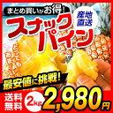 一覧イメージ - 【送料無料】沖縄県産 スナックパイン 2kgちぎって..